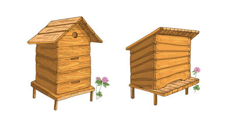 Set of wooden beehives isolated on white background. Hives or structures for honey production, bee colony housing, beekeeping. Colorful hand drawn vector illustration in elegant vintage style