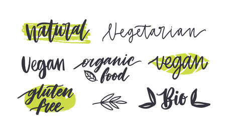 Set of labels with written inscriptions for gluten free, vegetarian, organic products, natural healthy food. Collection of tags isolated on white background. Colored hand drawn vector illustration