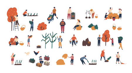 Crowd of tiny people gathering crops or seasonal harvest. Bundle of men and women collecting ripe fruits, berries and vegetables isolated on white background. Flat cartoon vector illustration
