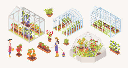 Bundle of various glass greenhouses with plants, flowers and vegetables growing inside, gardeners, farmers or agricultural workers isolated on white background. Colorful isometric vector illustration