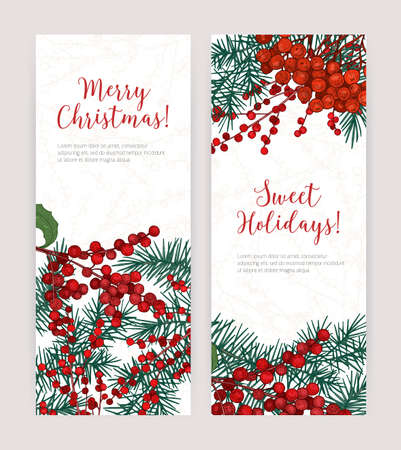 Collection of vertical Christmas banners with coniferous tree branches, holly leaves and berries, holiday lettering and place for text. Festive vector illustration in elegant realistic style.