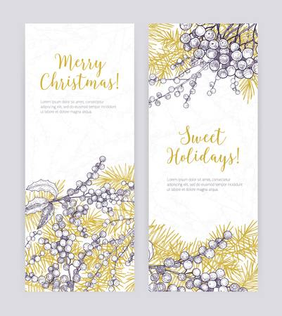 Set of vertical Christmas banner templates with coniferous tree branches, holly leaves and berries hand drawn with contour lines on white background. Holiday vector illustration in realistic style