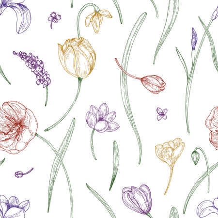 Floral seamless pattern with beautiful blooming garden flowers drawn with colored contour lines on white background. Realistic natural vector illustration for fabric print, wrapping paper, wallpaper
