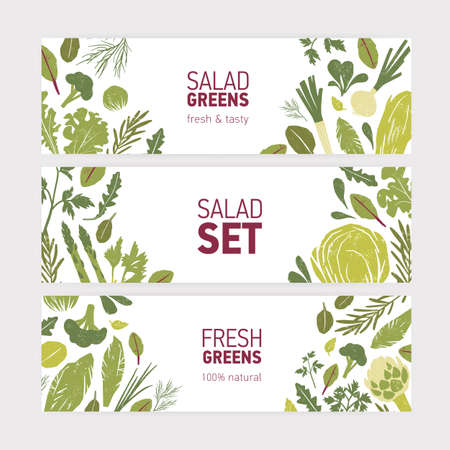 Collection of modern web banner templates with green vegetables, fresh salad leaves and spice herbs on white background. Vector illustration for eco friendly organic products advertising, promo Ilustracja