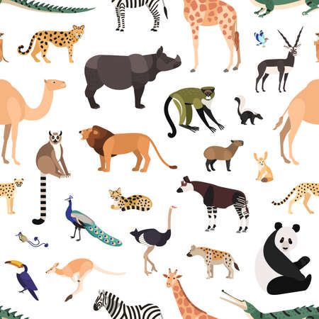 Seamless pattern with exotic animals and birds on white background. Backdrop with wild fauna of African tropical jungle, savannah and desert. Colorful vector illustration in flat cartoon style. Stock Illustration - 113124038