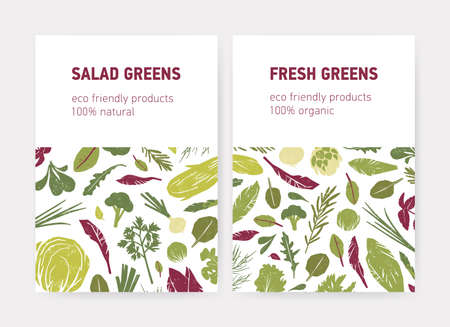 Bundle of flyer or poster templates with green vegetables, fresh salad leaves, spice herbs and place for text on white background. Flat vector illustration for eco friendly products advertisement  イラスト・ベクター素材