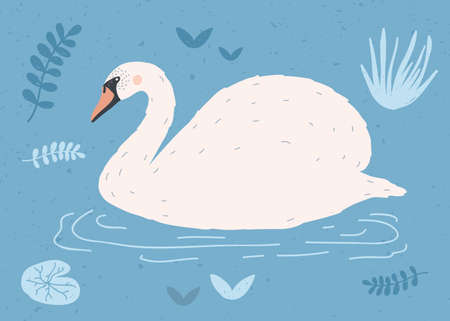 Beautiful white swan swimming in water of pond or lake among plants. Cute elegant cartoon wild bird, game fowl or waterfowl. Flat colorful hand drawn vector illustration in modern naive style.