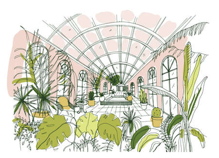 Elegant drawing of interior of pavilion or greenhouse full of tropical plants with lush foliage. Freehand sketch of botanical garden with exotic trees growing in pots. Hand drawn vector illustration.