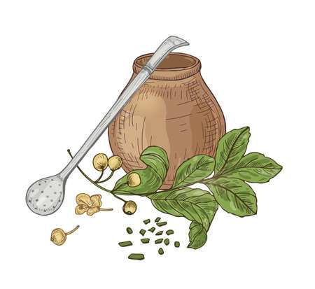 Composition with mate tea in traditional calabash, bombilla straw, flowers and leaves isolated on white background. Tasty herbal natural hot drink, aromatic beverage. Hand drawn vector illustration Illustration