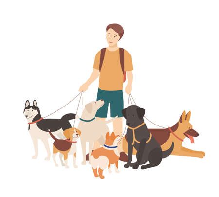 Happy boy walking his purebred dogs on leash. Young smiling guy standing with domestic animals. Cute funny pet owner isolated on white background. Colorful flat cartoon vector illustration Ilustración de vector