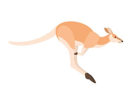 Canguro saltando aislado sobre fondo blanco. Retrato de animal salvaje australiano, vista lateral. Hermosas especies exóticas, fauna de Australia. Ilustración de vector colorido en estilo de dibujos animados plana