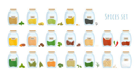 Bundle of spices stored in closed glass jars isolated on white background. Set of spicy condiments, aromatic cooking ingredients in transparent kitchen containers. Colored vector illustration