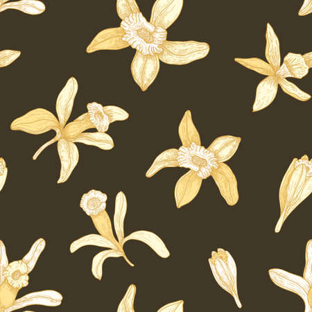 Natural seamless pattern with blooming vanilla flowers on dark background. Floral backdrop with blossom of exotic plant. Botanical vector illustration hand drawn in vintage style for textile print