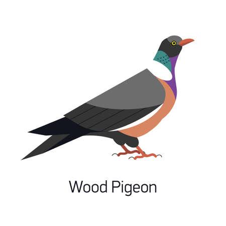 Pigeon ramier commun ou Culver isolé sur fond blanc. Magnifique oiseau forestier, habitant des bois. Oiseau mignon. Espèce aviaire. Illustration vectorielle de couleur moderne dans un style géométrique branché.