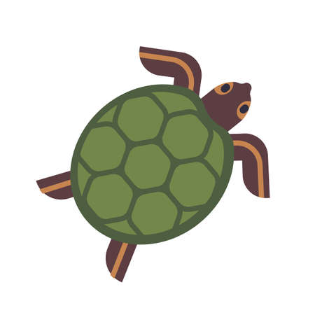 Sea turtle, tortoise or terrapin isolated on white background. Gorgeous adorable exotic animal. Cute lovely wild aquatic or semiaquatic reptile. Colorful vector illustration in flat cartoon style