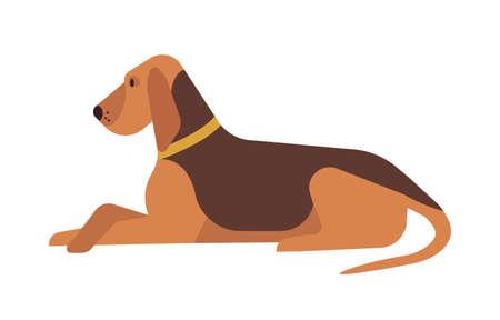 Netter lustiger reizender Hund, der auf dem Boden lokalisiert auf weißem Hintergrund liegt und stillsteht. Entzückendes ruhiges reinrassiges Haustier, das sich entspannt oder ruht. Helle farbige Vektorillustration im flachen Cartoon-Stil