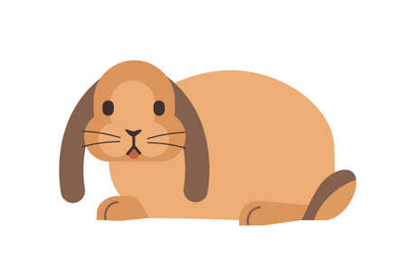 Little domestic lop-eared rabbit or bunny. Funny adorable domesticated animal isolated on white background. Small lovely cute fluffy pet. Colorful vector illustration in flat cartoon style