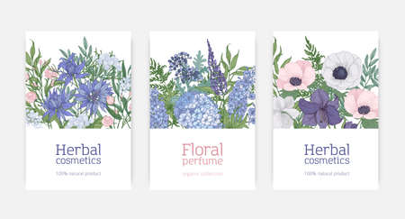 Bundle of card or flyer templates for herbal cosmetics and natural floral perfume advertisement decorated by blooming blue, pink and purple flowers and flowering plants. Elegant vector illustration Ilustração