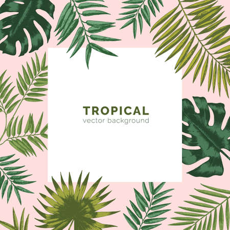 Tropical backdrop or background with frame or border made of exotic foliage or leaves jungle plants and place for text. Natural seasonal realistic hand drawn vector illustration in elegant style