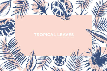 Tropical background decorated by frame made of exotic palm tree branches, Monstera and banana leaves. Hawaiian backdrop with foliage of jungle plants. Monochrome realistic vector illustration