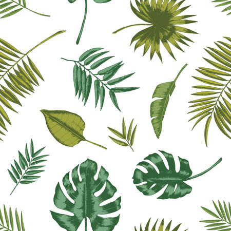 Hawaiian seamless pattern with tropical foliage on white background. Natural backdrop with green leaves of exotic rainforest plants or trees. Summer vector illustration for wrapping paper, wallpaper Standard-Bild - 124954637