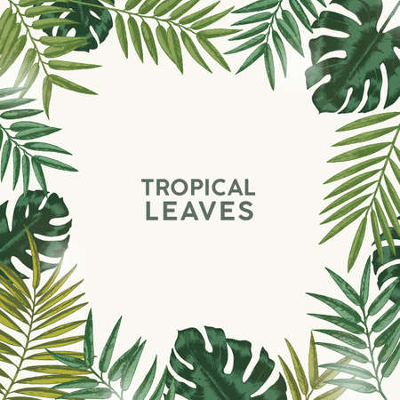 Square summer backdrop or background with frame or border made of green tropical foliage or exotic leaves of rainforest and jungle plants and place for text. Natural realistic vector illustration
