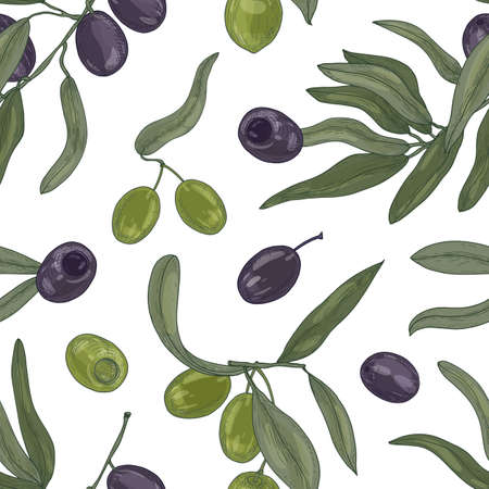 Botanical seamless pattern with organic olive tree branches, leaves, black and green ripe fruits or drupes on white background. Vintage hand drawn vector illustration for textile print, backdrop