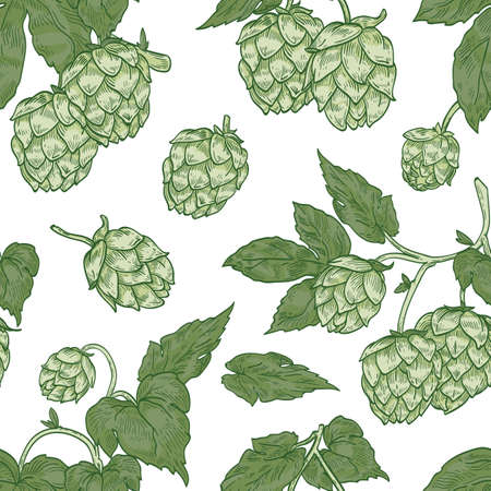 Natural seamless pattern with hop flowers on white background. Botanical backdrop with plant cultivated for beer brewing. Realistic vector illustration in elegant vintage style for wrapping paper