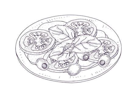 Ensalada Caprese en placa dibujada a mano con curvas de nivel sobre fondo blanco. Comida sana y sabrosa en un restaurante italiano a base de tomates frescos, mozzarella, albahaca y aceitunas. Ilustración vectorial realista Ilustración de vector