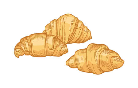 Fresh delicious croissants isolated on white background. Realistic drawing of tasty baked product or sweet homemade pastry for breakfast. Colorful hand drawn vector illustration in vintage style