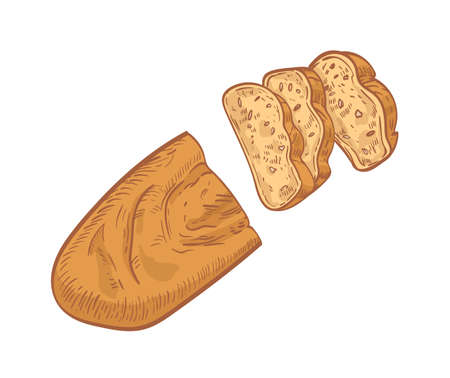 Loaf of bread cut into slices isolated on white background. Realistic drawing of fresh baked product or delicious homemade breakfast food. Colorful hand drawn vector illustration in vintage style  イラスト・ベクター素材