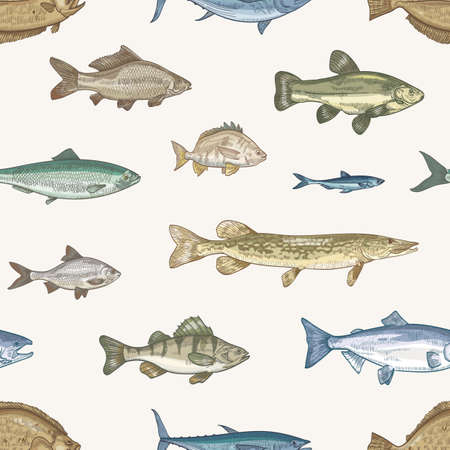 Elegant seamless pattern with different types of fish on light background. Backdrop with underwater animals or aquatic creatures living in sea, ocean, lake. Vector illustration in vintage style