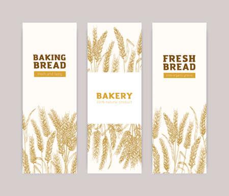 Ensemble de modèles de bannières verticales avec épis de blé sur fond blanc. Produits de boulangerie, publicité pour le pain, la boulangerie, la boulangerie ou le fournil. Illustration vectorielle réaliste dans un style vintage élégant. Vecteurs
