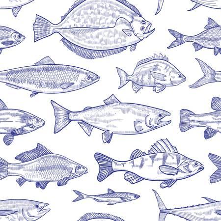 Modèle sans couture avec poisson dessinés à la main avec des lignes de contour sur fond blanc. Toile de fond avec des animaux marins ou des créatures aquatiques vivant dans la mer, l'océan, l'étang d'eau douce. Illustration vectorielle monochrome