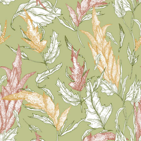 Floral seamless pattern with quinoa plants hand drawn with colorful contour lines on green background. Backdrop with edible grain crop. Natural vector illustration in vintage style for wallpaper