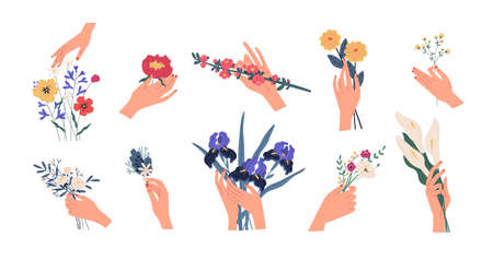 Collection of hands holding bouquets or bunches of blooming flowers. Bundle of floral decorative design elements isolated on white background. Set of elegant summer gifts. Flat vector illustration