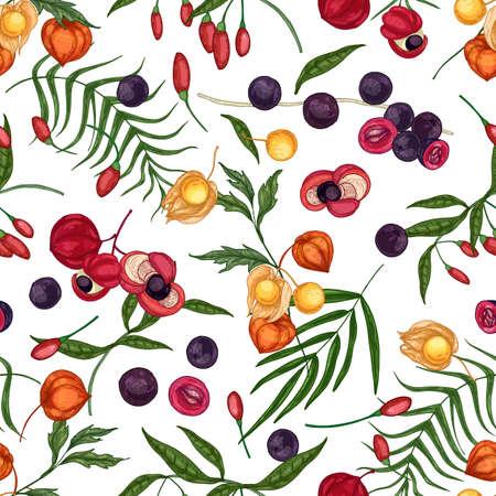 Modèle sans couture élégant avec le goji frais, l'açai, le guarana, les fruits et les baies de physalis sur le fond blanc. Toile de fond avec des superaliments biologiques. Illustration vectorielle naturelle pour l'impression de tissu, papier peint