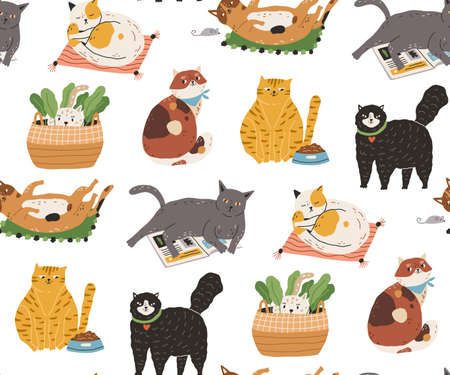 Seamless pattern with cute funny cats sleeping, washing, stretching itself, playing, hiding. Backdrop with adorable purebred pet animals on white background. Flat colorful vector illustration.