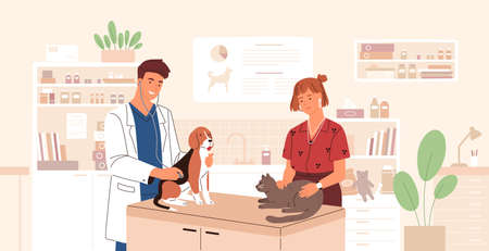 Smiling veterinarian examining dog and cat. Vet doctor curing cute pets. Veterinary clinic, healthcare service or medical center for domestic animals. Flat cartoon colorful vector illustration