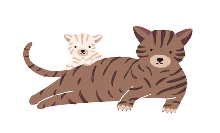 Cat with cub isolated on white background. Kitty family, domestic animals. Cute funny parent with child or youngling, mom and baby or offspring. Flat cartoon colorful vector illustration.