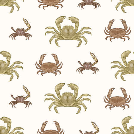 Seamless pattern with various types of crabs on white background. Natural backdrop with aquatic animals. Elegant realistic vector illustration in vintage style for wrapping paper, textile print.