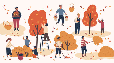 Different people picking fruits and berries, remove hay and leaves. Men and women work on a farm, in the orchards. Agricultural workers harvest in autumn. Vector illustration in flat cartoon style.