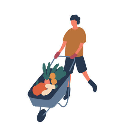 Farmer transporting vegetables flat vector illustration. Young rancher cartoon character. Man pushing trolley with raw veggies isolated on white background. Seasonal farming chores, agriculture. Stock Illustratie
