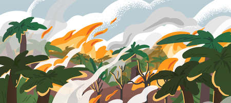 Amazonian forest fire panorama flat vector illustration. Tropical environment destruction, natural disaster, deforestation problem. Burning amazonia woods, ecological catastrophe, landscape in smoke