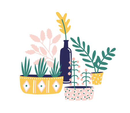 Potted houseplants flat vector illustration. Succulents, flowers and green herbs for home decoration isolated on white background. Windowsill gardening design element. Floristry hobby.