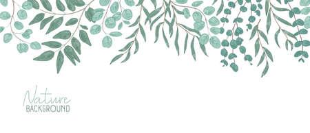 Fond réaliste de vecteur nature. Toile de fond de feuillage avec place pour le texte. Composition botanique, branches d'arbustes aux feuilles vertes. Feuillage naturel, frondage. Illustration florale dessinée à la main. Vecteurs