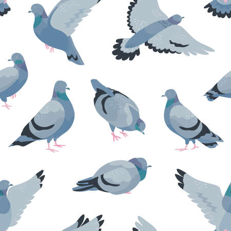 Pigeons flat vector seamless pattern. Cartoon grey birds on white background. Trendy animalistic textile print. Wildlife fauna wallpaper, sitting and flying doves wrapping paper design. Vectores
