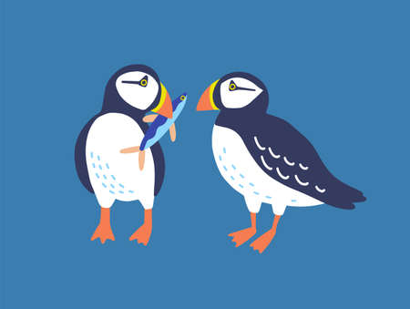 Atlantic puffins flat vector illustration. North fauna, wildlife. Red Book bird. Seafowl with fish in beak. Arctic shore seabird, ocean coast inhabitants isolated on blue background. Ilustração
