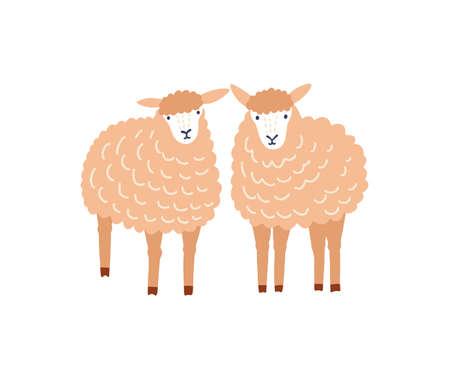 Two cute sheep flat vector illustration. Adorable woolly lambs, fluffy domestic animals isolated on white background. Ewe breeding, ovine farm livestock, husbandry decorative design element. Vector Illustratie