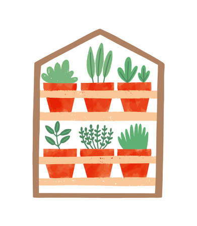 Houseplants in ceramic pots flat vector illustration. Succulents, domestic decorative greenery. Flower growing, home plants care. Clay flowerpots on wooden shelf isolated on white background.
